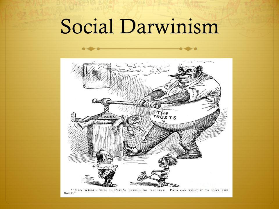 social darwinsim essay