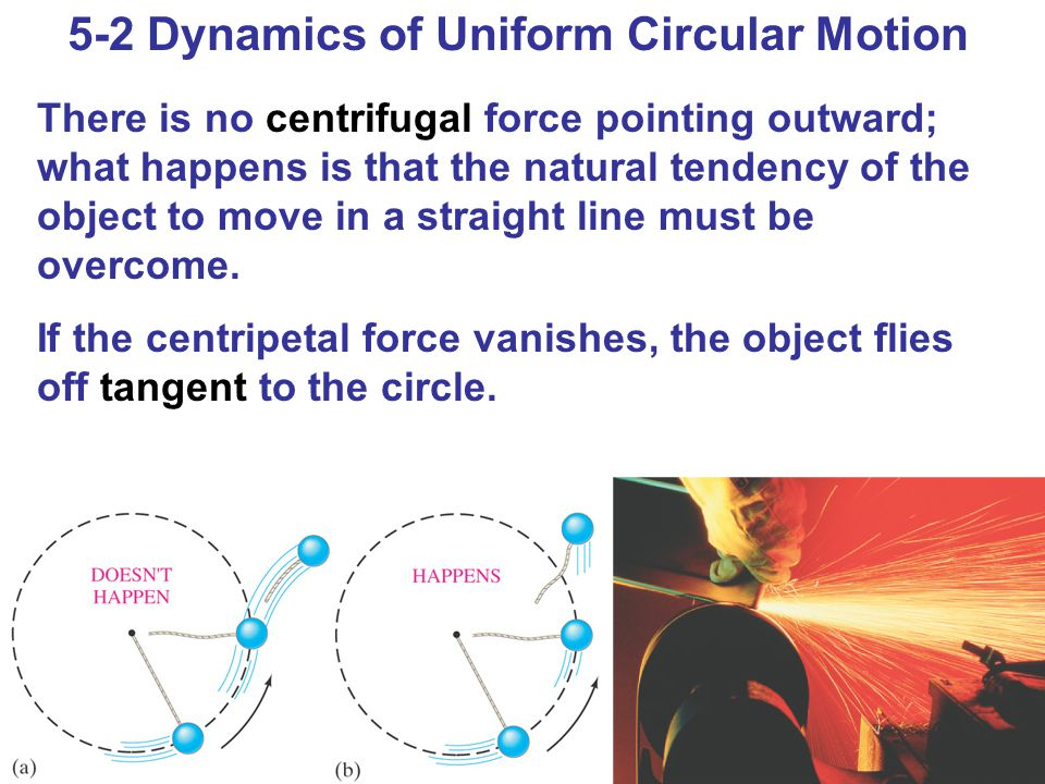 5-2 Dynamics of Uniform Circular Motion There is no centrifugal force pointing outward; what happens is that the natural tendency of the object to move in a straight line must be overcome.