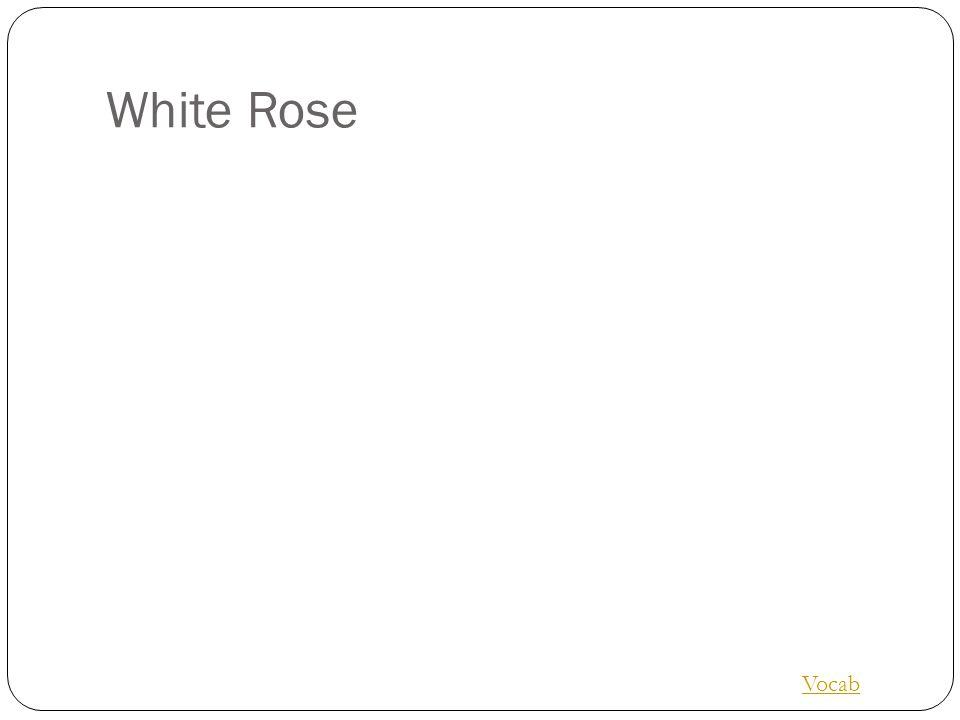 White Rose Vocab