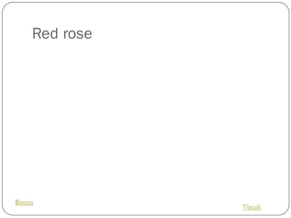 Red rose Vocab Bonus