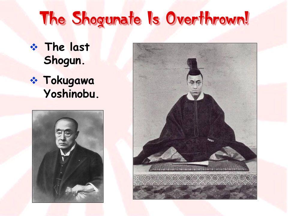 The Shogunate Is Overthrown!  The last Shogun.  Tokugawa Yoshinobu.