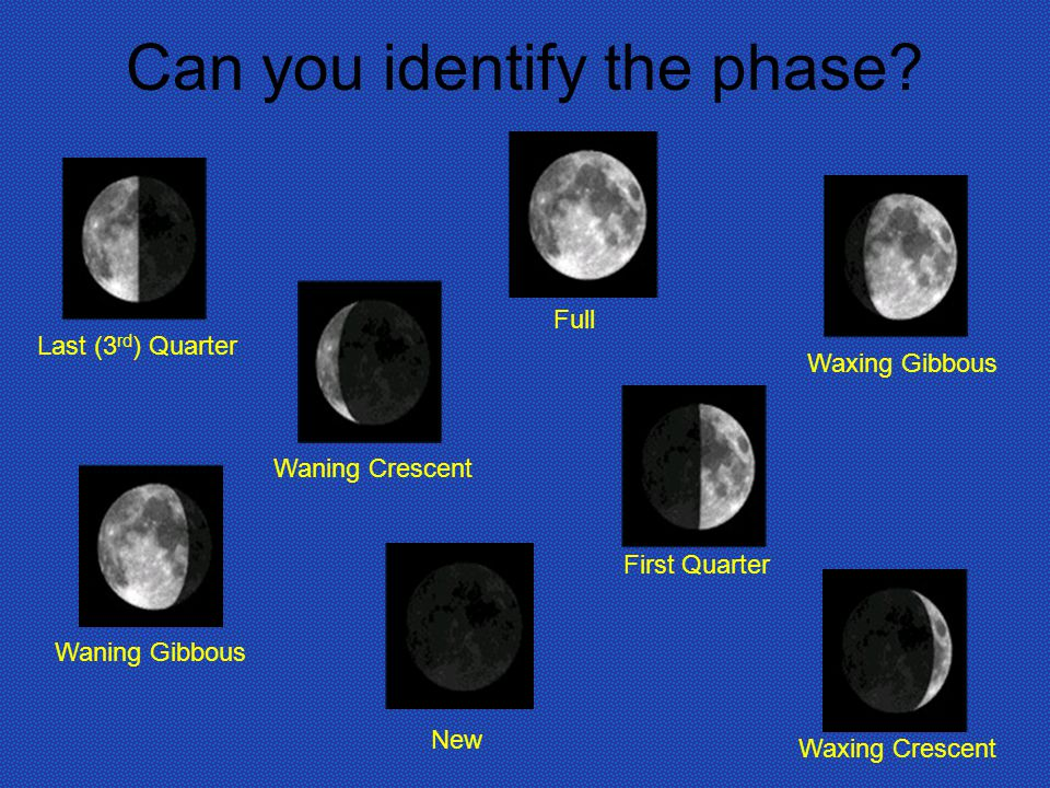 Can you identify the phase.