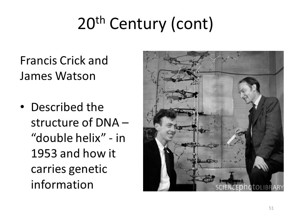 """20 th Century (cont) 51 Francis Crick and James Watson Described the structure of DNA – """"double helix"""" - in 1953 and how it carries genetic informatio"""