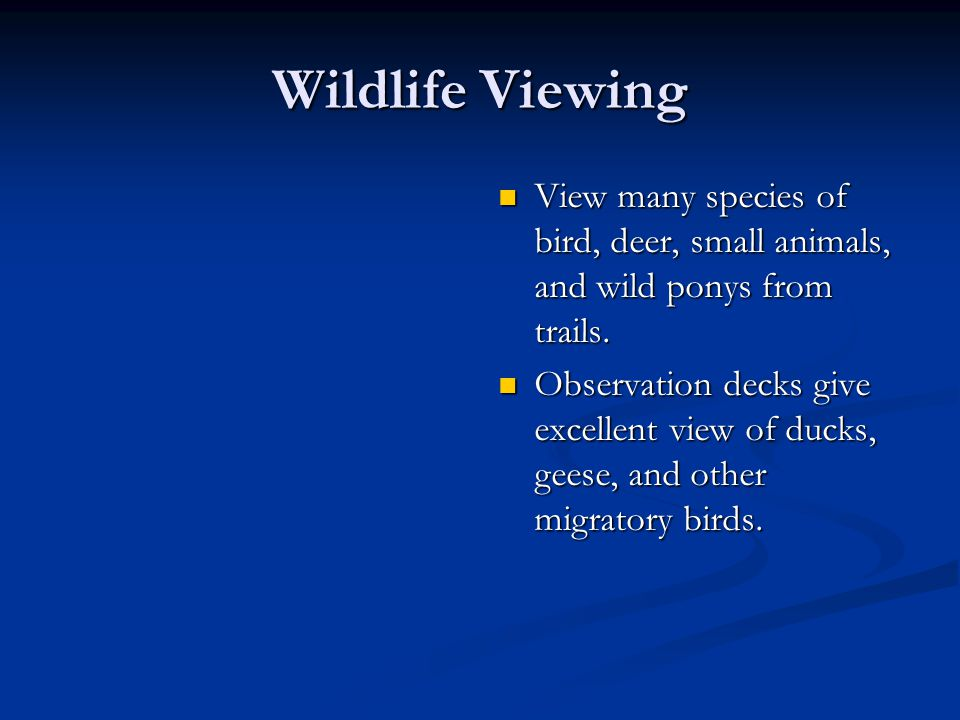 Wildlife Viewing View many species of bird, deer, small animals, and wild ponys from trails.
