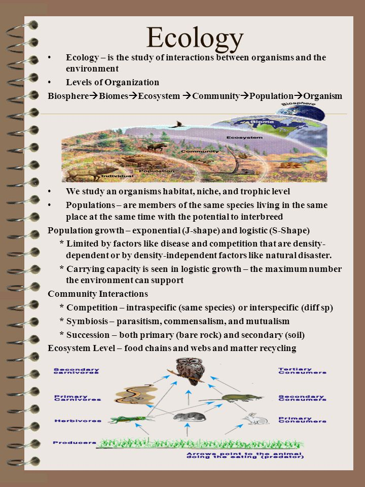 Ecology Ecology – is the study of interactions between organisms and the environment Levels of Organization Biosphere  Biomes  Ecosystem  Community