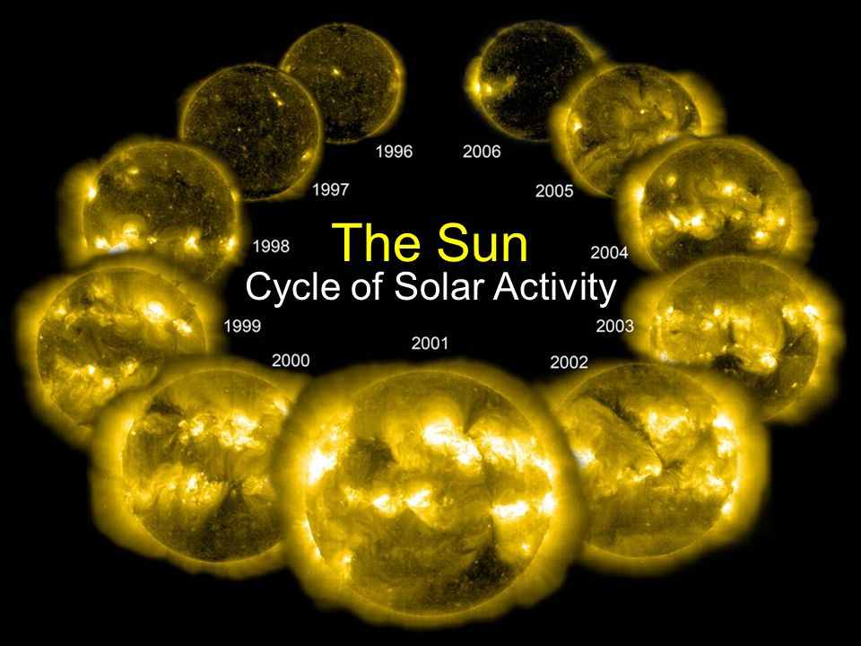 The Sun Cycle of Solar Activity