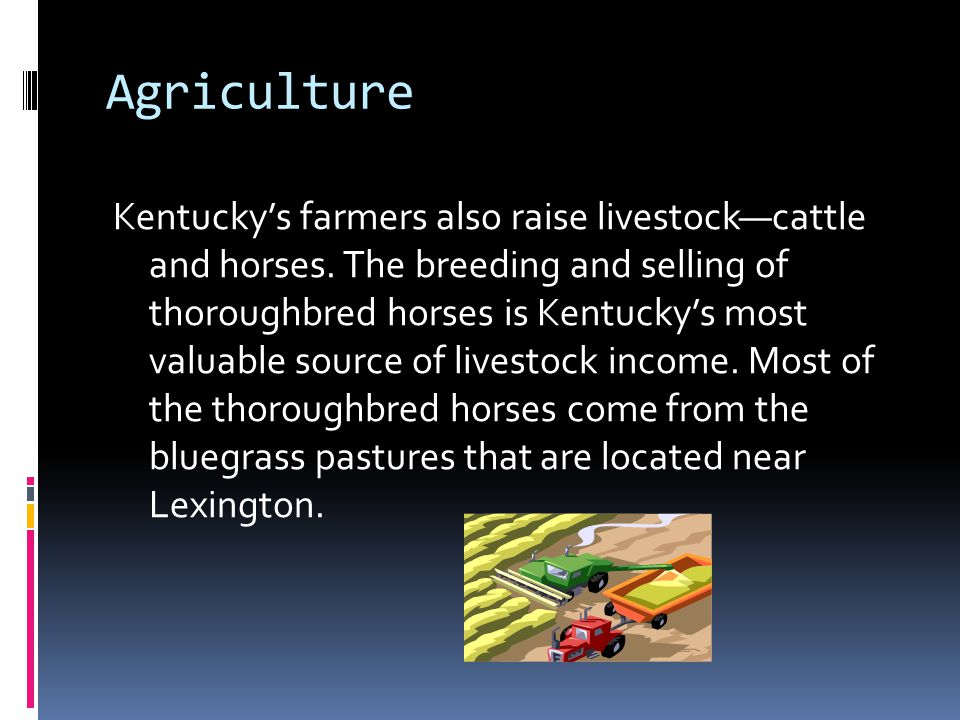 Agriculture Kentucky's farmers also raise livestock—cattle and horses. The breeding and selling of thoroughbred horses is Kentucky's most valuable sou