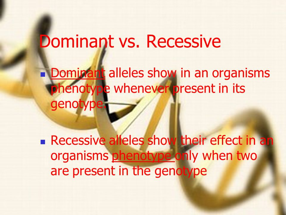 Allele Different forms of a gene T- tall t- short