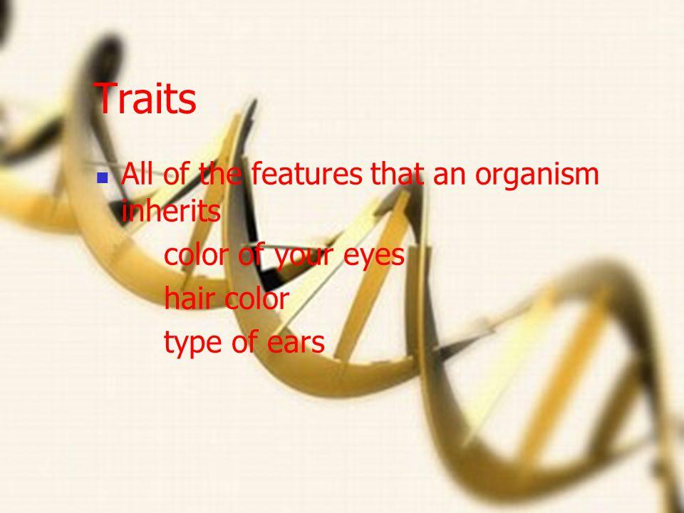 Genetics and DNA