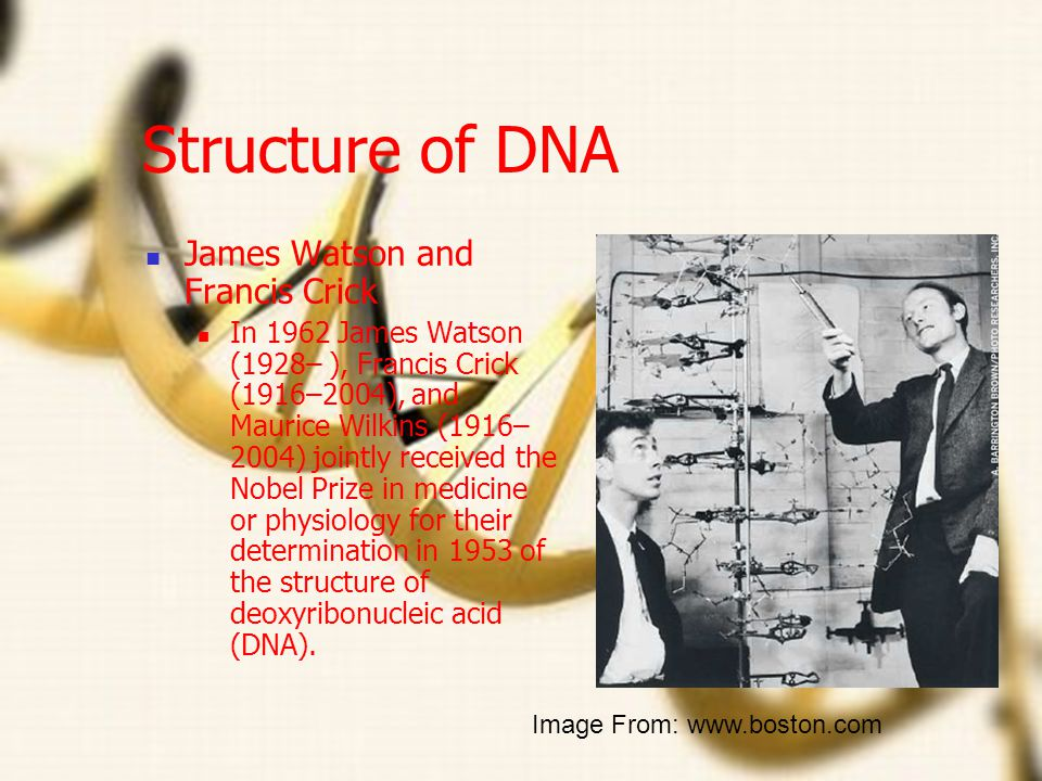 Rosalind Franklin Worked with x-ray radiation to take the first pictures of DNA Died of cancer most likely related to her work with X-rays Image From: