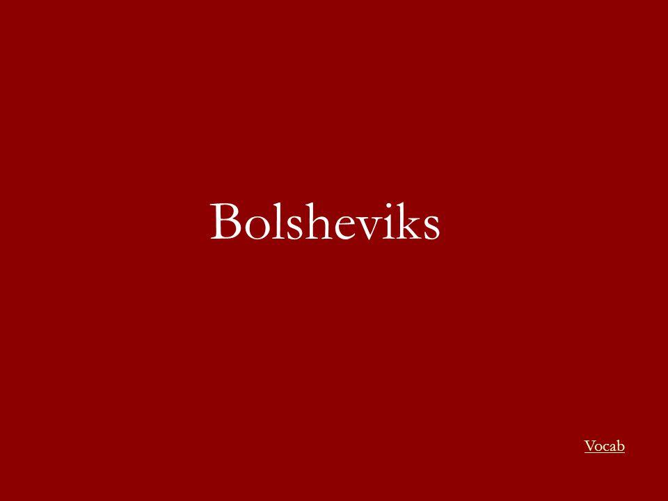 Bolsheviks Vocab