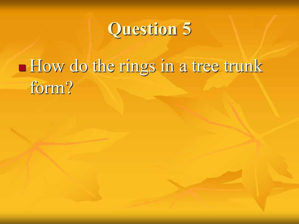 Question 5 Answer As the tree grows, it produces new vascular tissue.