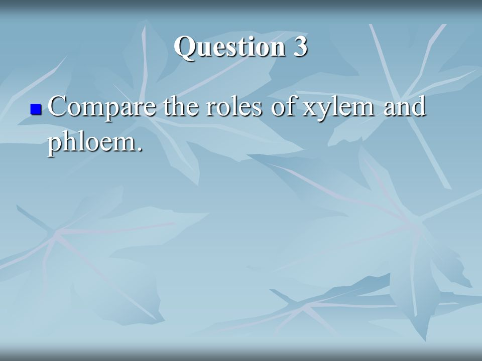 Question 3 Answer Xylem transports water and nutrients from the roots up to the other parts of the plant.