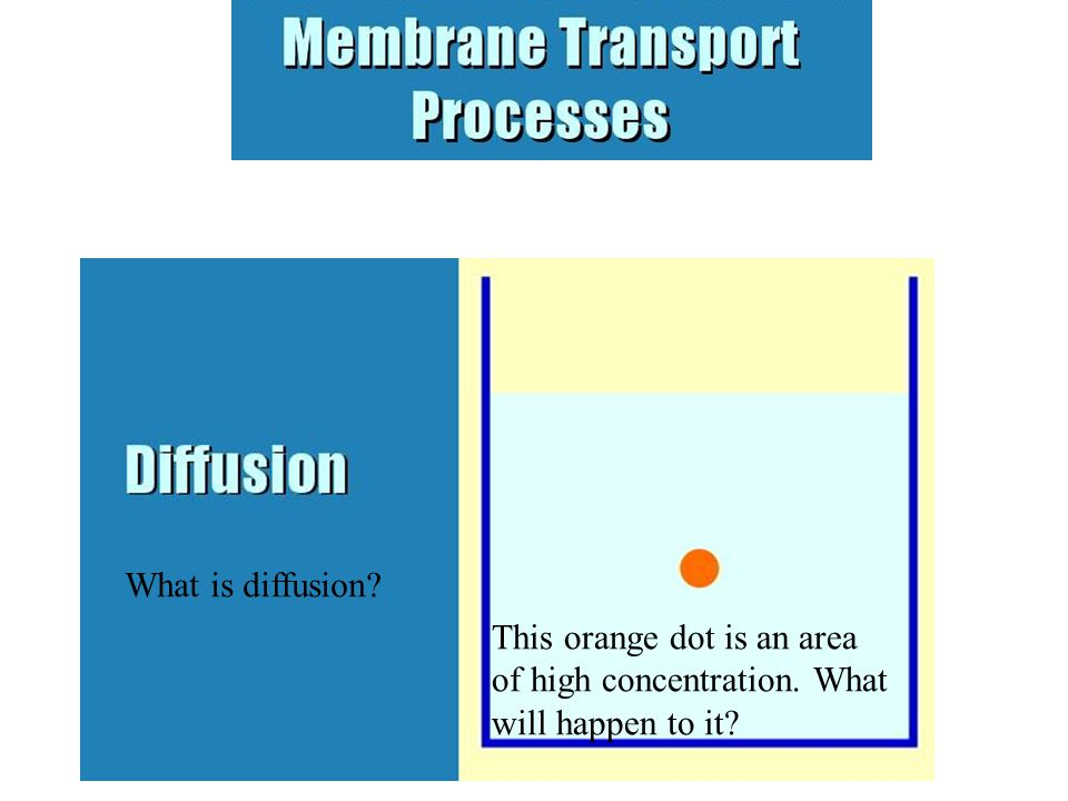 This orange dot is an area of high concentration. What will happen to it What is diffusion