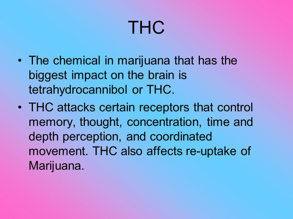 THC The chemical in marijuana that has the biggest impact on the brain is tetrahydrocannibol or THC. THC attacks certain receptors that control memory