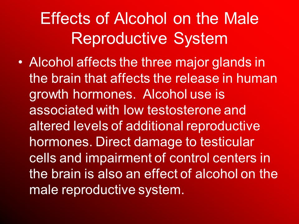 Effects of Alcohol on the Male Reproductive System Alcohol affects the three major glands in the brain that affects the release in human growth hormones.