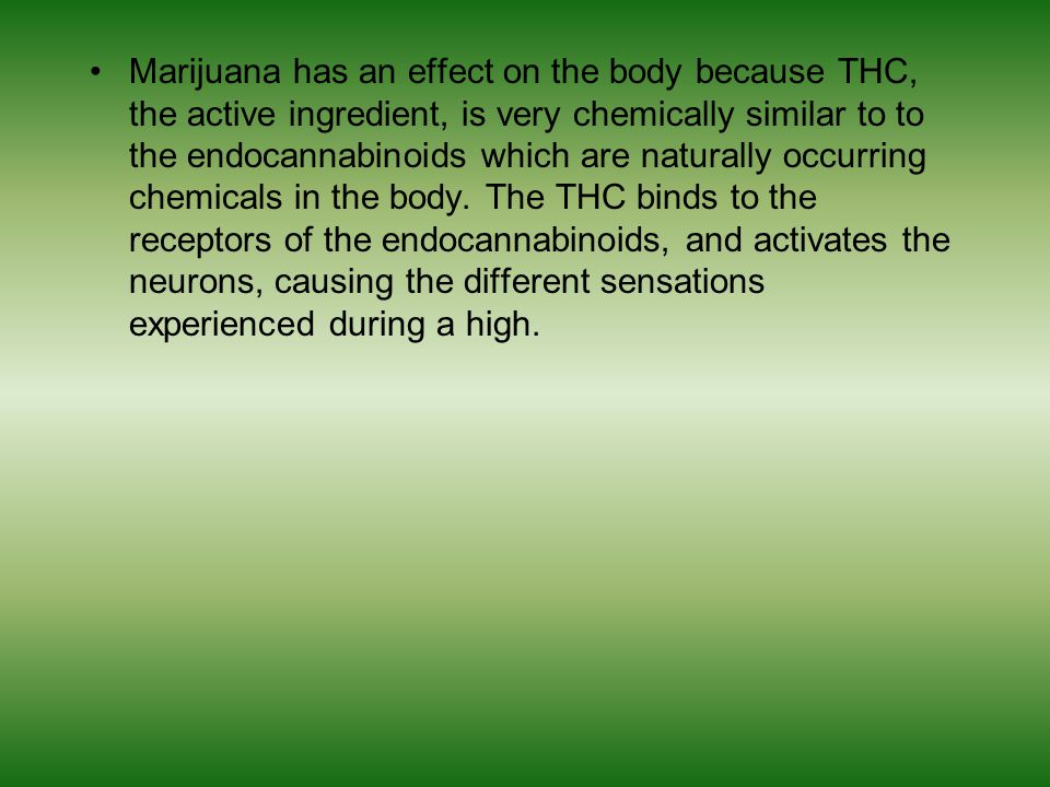 Marijuana produces body hormones, the internal chemicals that control how and when we develop.