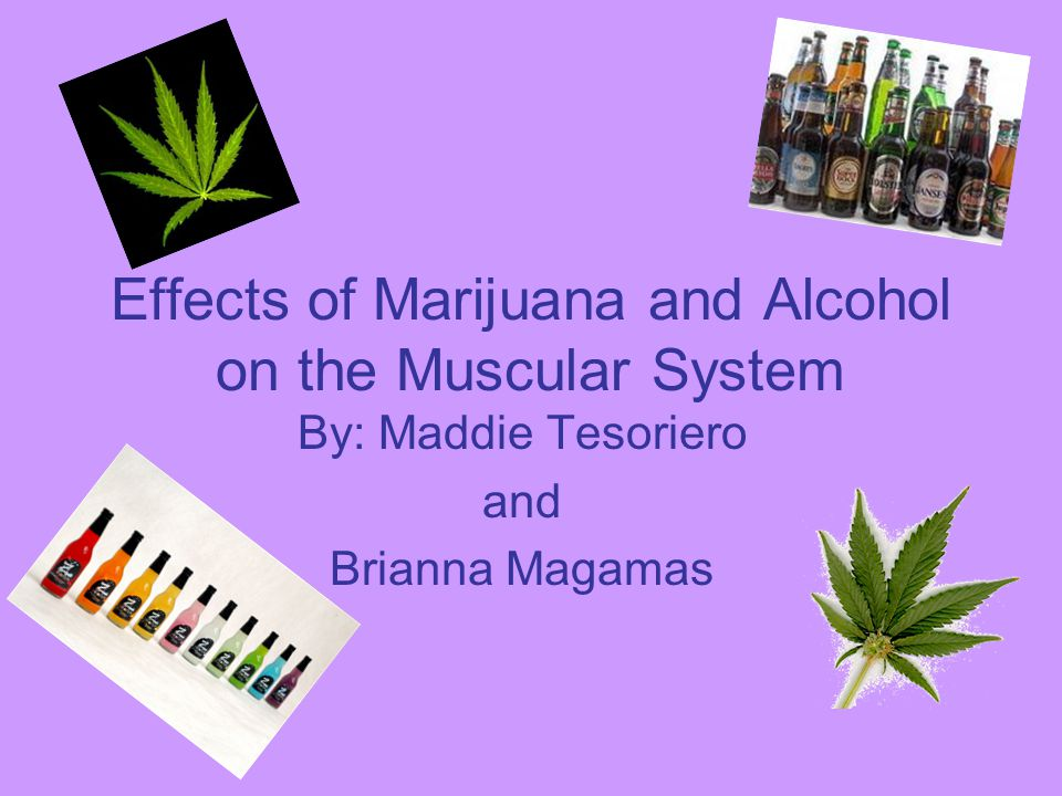 Effects of Marijuana and Alcohol on the Muscular System By: Maddie Tesoriero and Brianna Magamas
