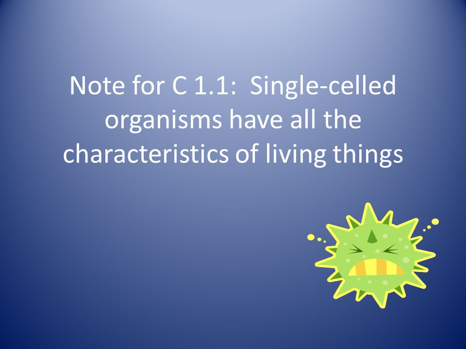 Note for C 1.1: Single-celled organisms have all the characteristics of living things