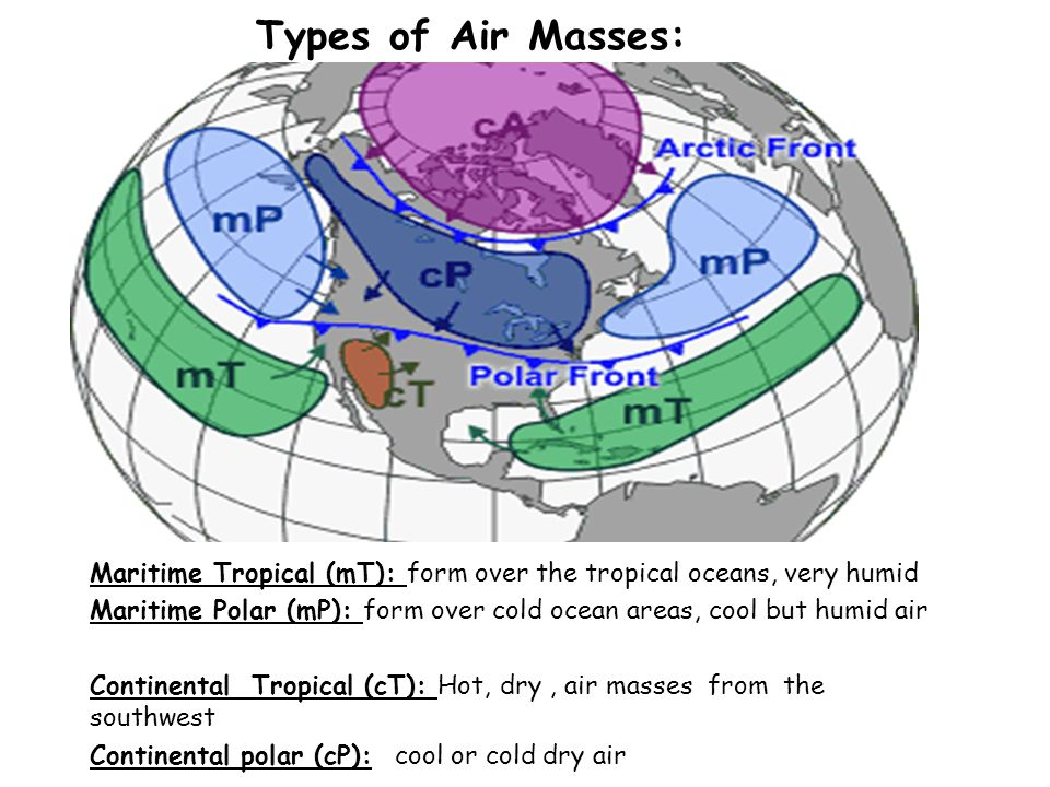 MAP TAP 2002-2003Weather Fronts36 Be a Weather Forecaster Of course, meteorologists (weather forecasters) use much more data than fronts and air masses to help them forecast the weather more accurately.