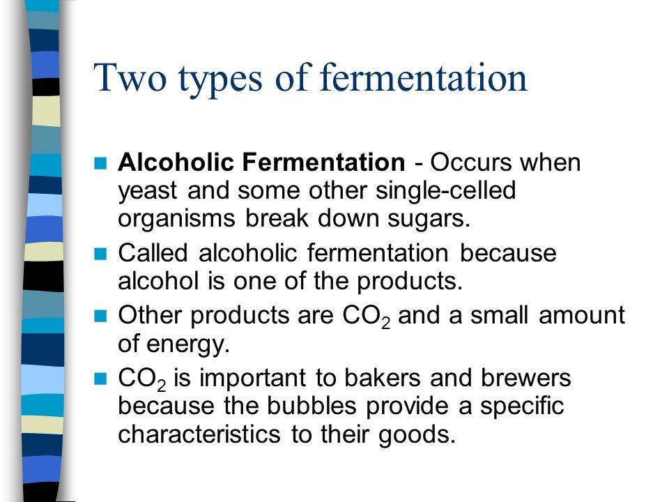 Two types of fermentation Alcoholic Fermentation - Occurs when yeast and some other single-celled organisms break down sugars. Called alcoholic fermen