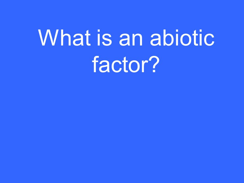 What is an abiotic factor