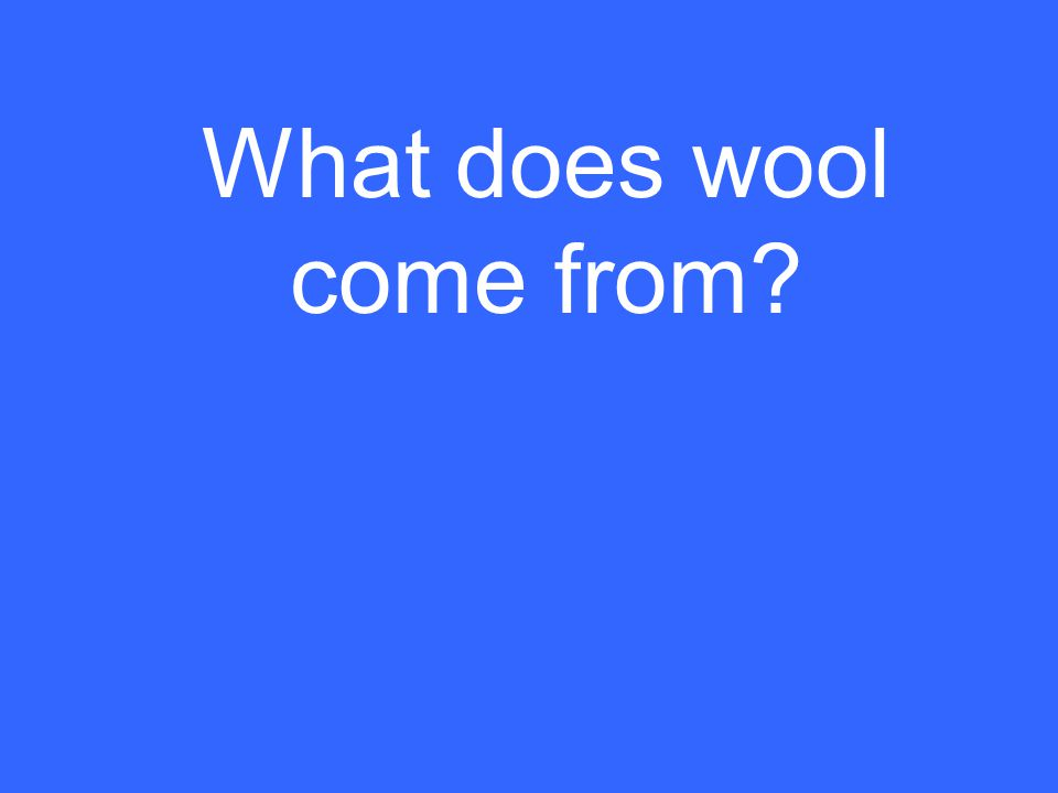 What does wool come from