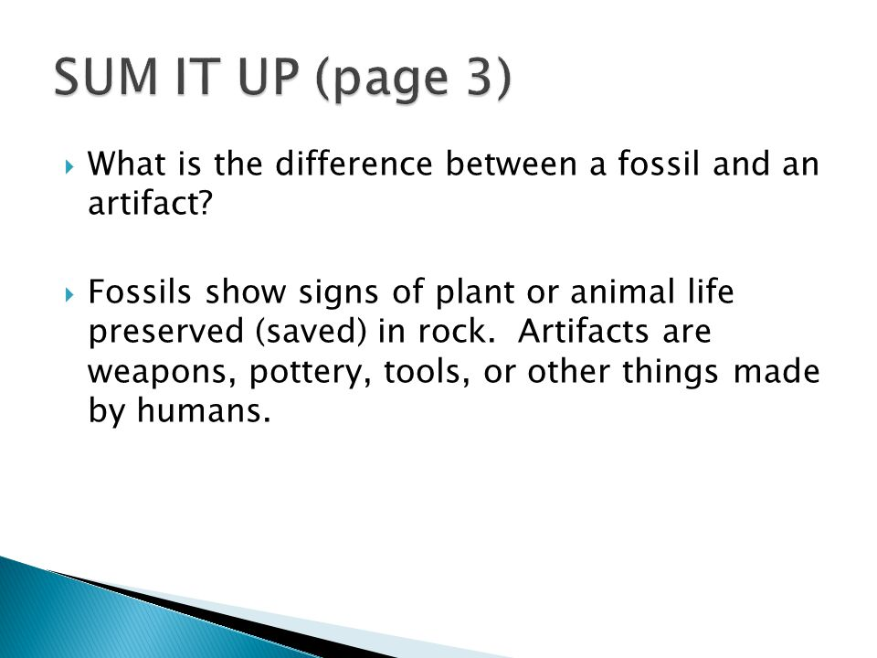  What is the difference between a fossil and an artifact.