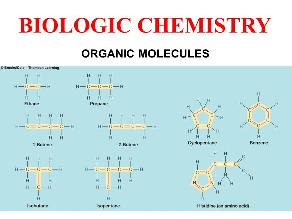 ORGANIC MOLECULES BIOLOGIC CHEMISTRY