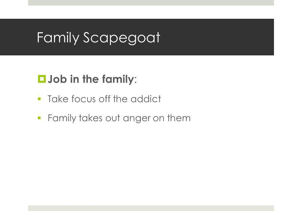 Family Scapegoat  Job in the family :  Take focus off the addict  Family takes out anger on them