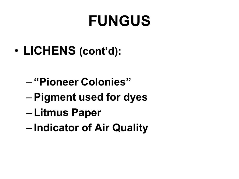 FUNGUS LICHENS (cont'd): – Pioneer Colonies –Pigment used for dyes –Litmus Paper –Indicator of Air Quality
