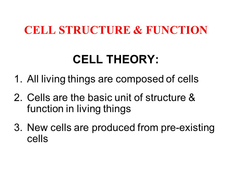 CELL STRUCTURE & FUNCTION 1a.