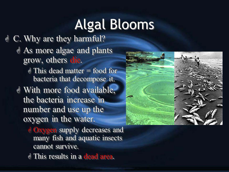 Algal Blooms G C. Why are they harmful. G As more algae and plants grow, others die.