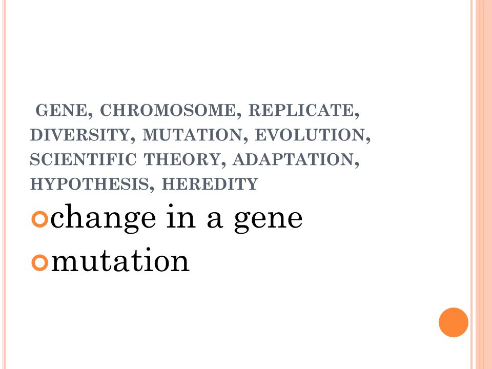 GENE, CHROMOSOME, REPLICATE, DIVERSITY, MUTATION, EVOLUTION, SCIENTIFIC THEORY, ADAPTATION, HYPOTHESIS, HEREDITY change in a gene mutation