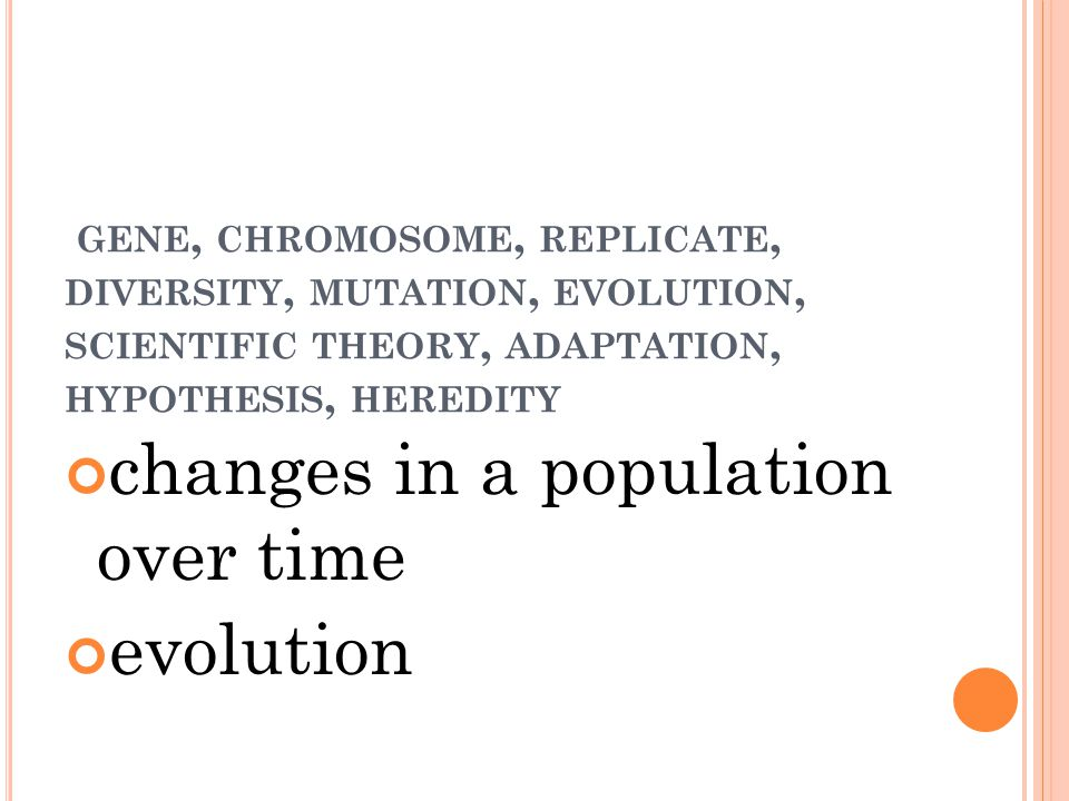GENE, CHROMOSOME, REPLICATE, DIVERSITY, MUTATION, EVOLUTION, SCIENTIFIC THEORY, ADAPTATION, HYPOTHESIS, HEREDITY changes in a population over time evolution