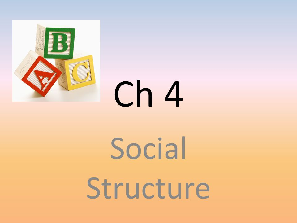 What is social structure Network of interrelated statuses and roles that guide human interaction – Status-socially defined position in a group or society (ascribed, achieved, & master – Role- behavior expected of someone occupying a particular status