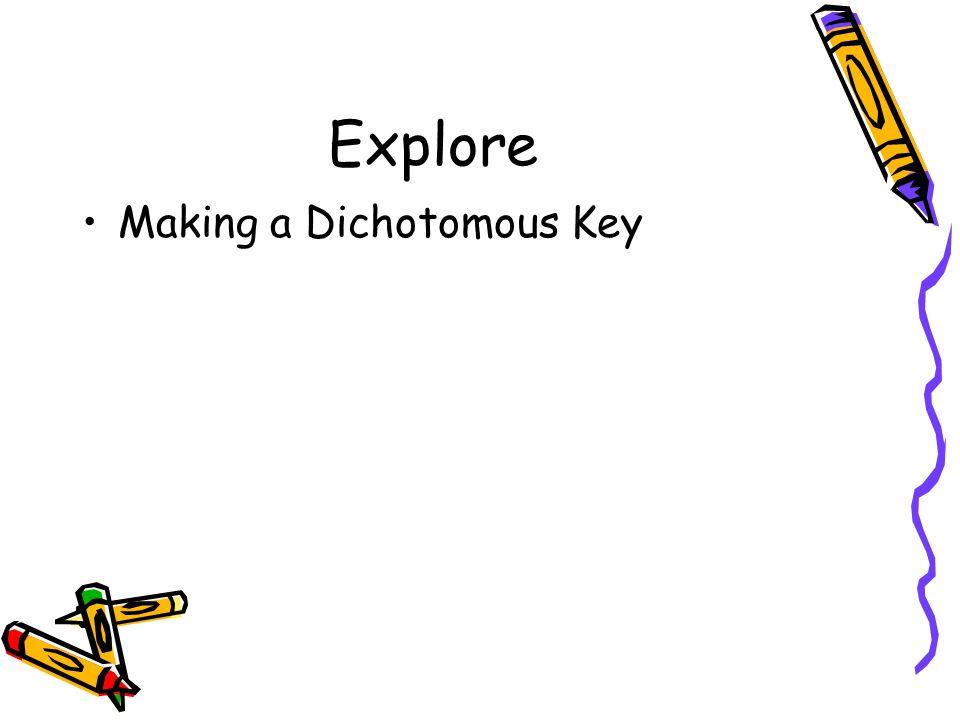 Explore Making a Dichotomous Key