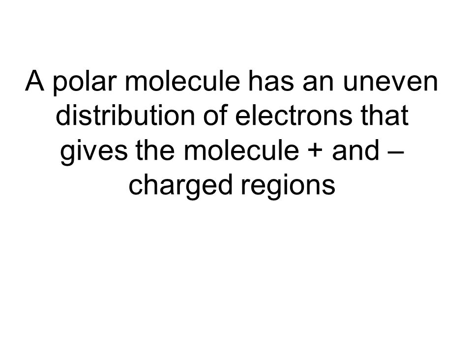 A polar molecule has an uneven distribution of electrons that gives the molecule + and – charged regions