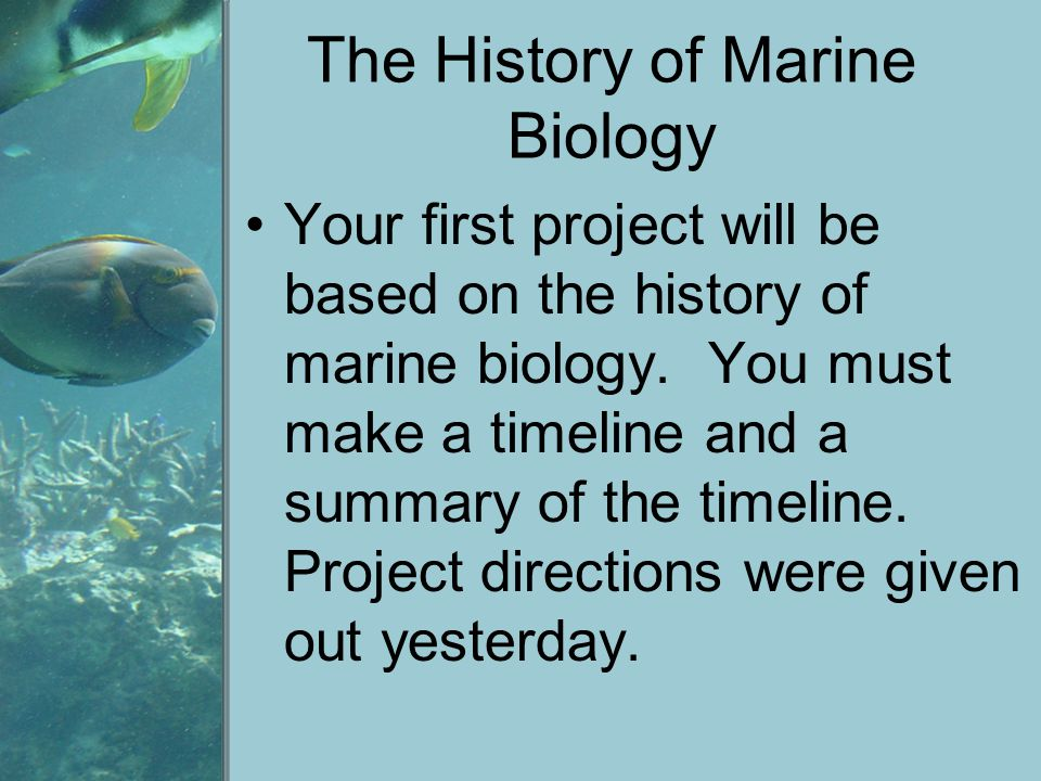 Marine Biology Today Oceanographic ships and shore- based laboratories are used by marine biologists.