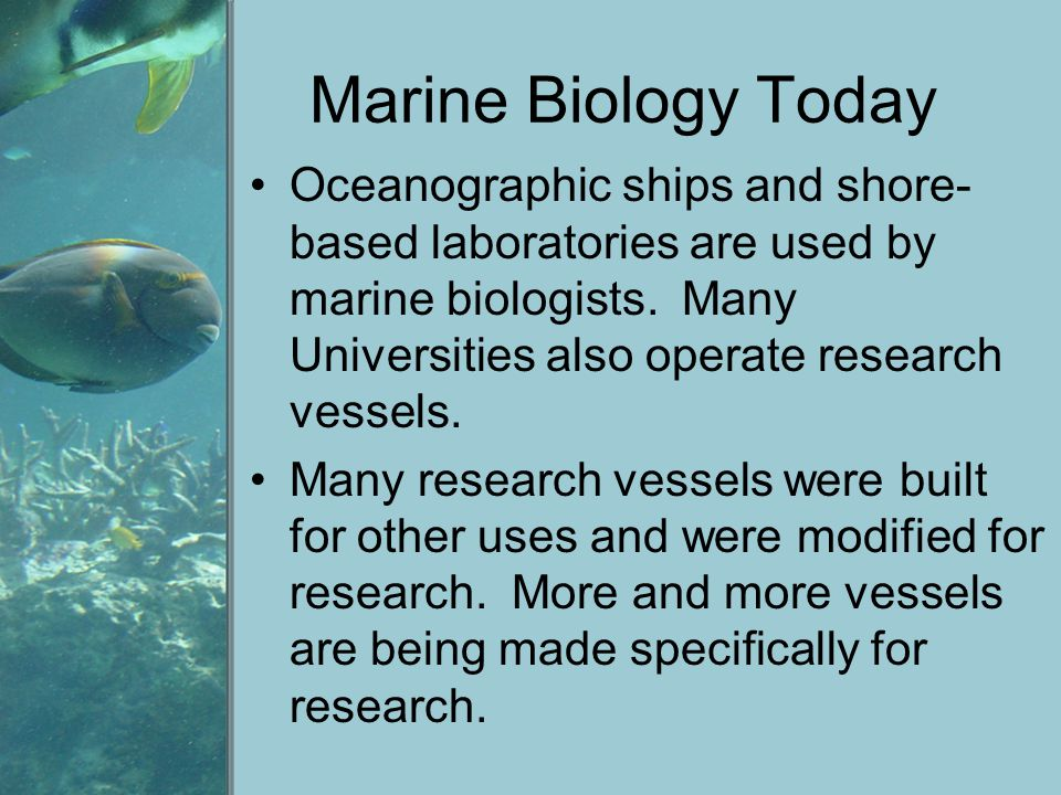 Marine Biology Today ROV – Remotely operated vehicles AUV – Autonomous underwater vehicles Marine animals can also be used by attaching sensors, oceanographic data can be collected throughout their life.