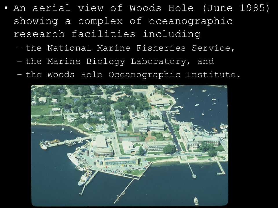 An aerial view of Woods Hole (June 1985) showing a complex of oceanographic research facilities including –the National Marine Fisheries Service, –the