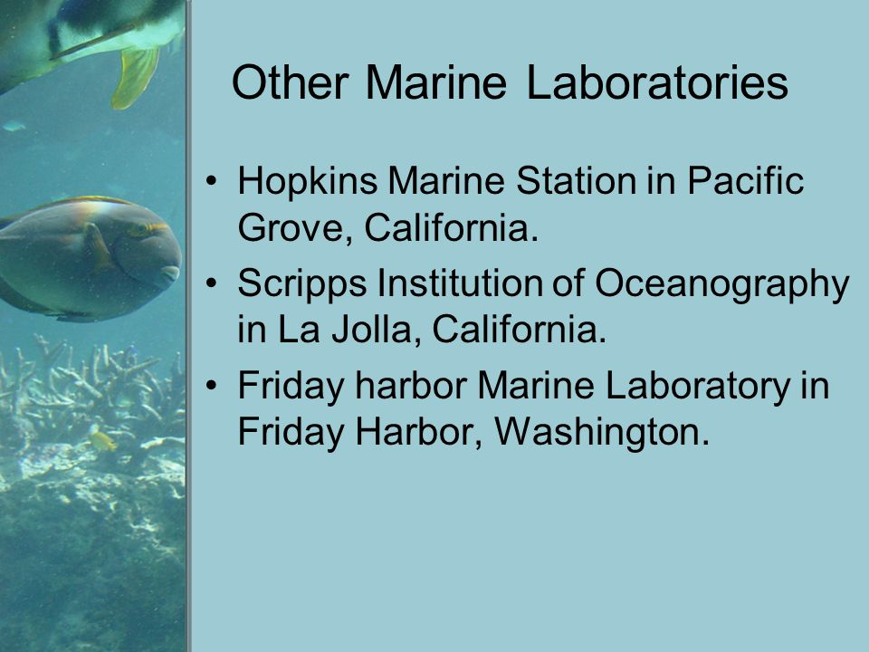 Other Marine Laboratories Hopkins Marine Station in Pacific Grove, California. Scripps Institution of Oceanography in La Jolla, California. Friday har