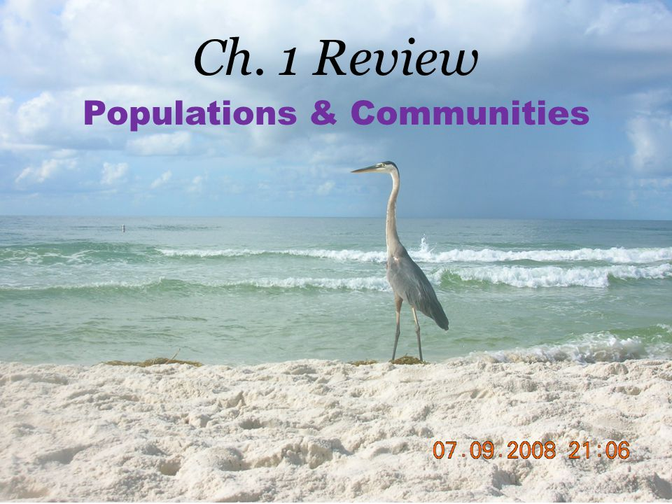 Ch. 1 Review Populations & Communities