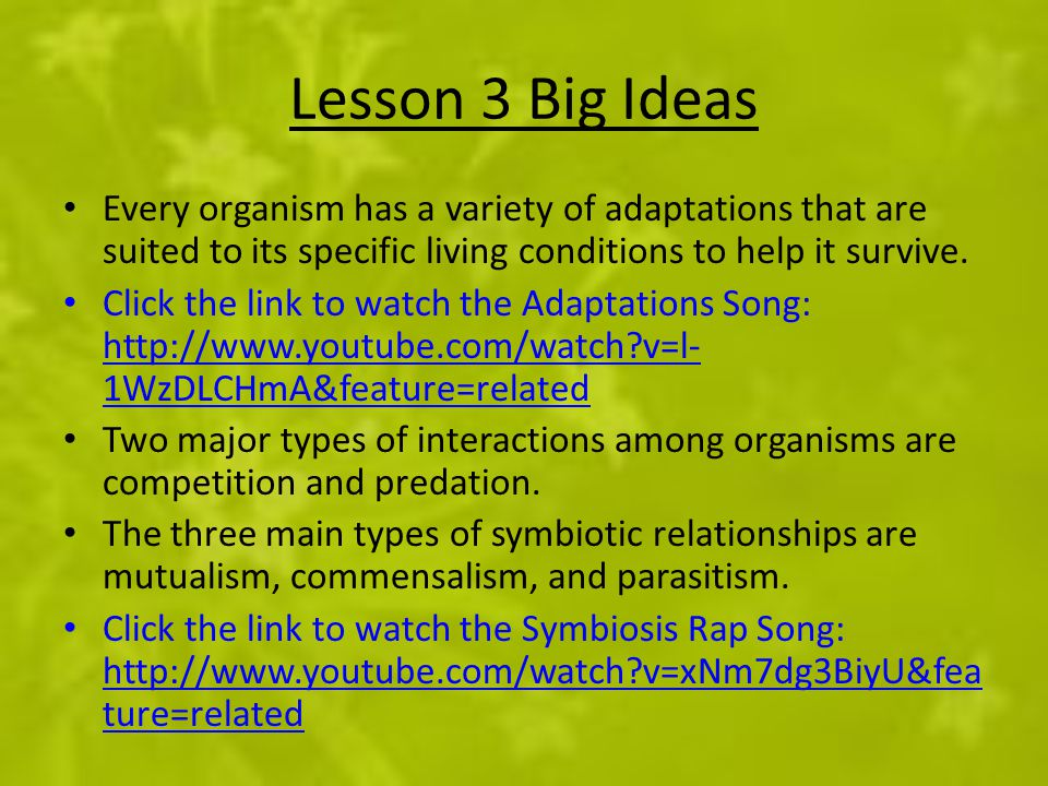 Lesson 3 Big Ideas Every organism has a variety of adaptations that are suited to its specific living conditions to help it survive. Click the link to