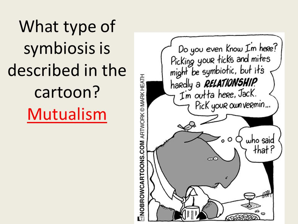 What type of symbiosis is described in the cartoon? Mutualism