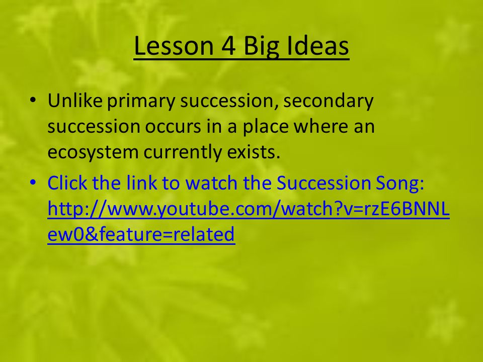 Lesson 4 Big Ideas Unlike primary succession, secondary succession occurs in a place where an ecosystem currently exists. Click the link to watch the