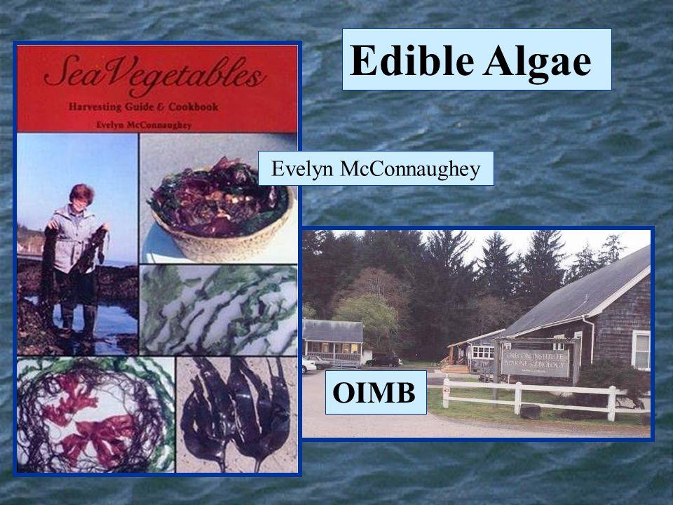 Evelyn McConnaughey OIMB Edible Algae