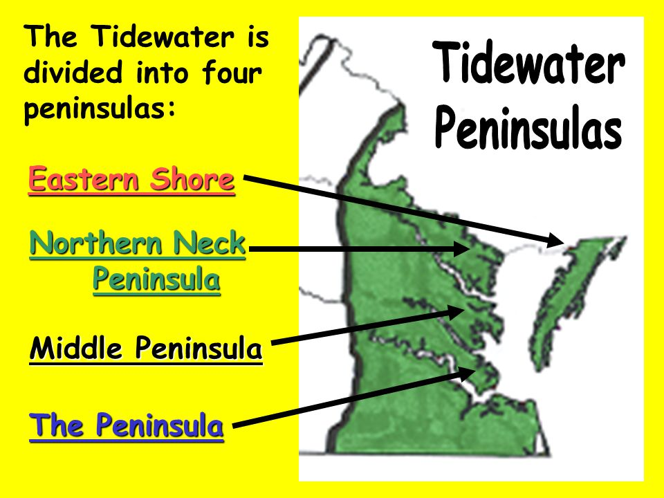 The Tidewater is divided into four peninsulas: Eastern Shore Northern Neck Peninsula Peninsula Middle Peninsula The Peninsula