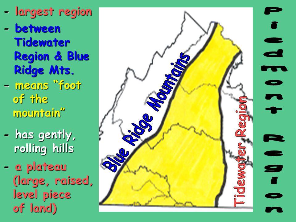 -largest region - largest region -between Tidewater Region & Blue Ridge Mts.