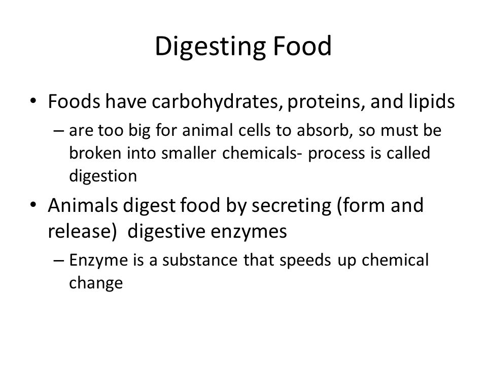 Digesting Food Foods have carbohydrates, proteins, and lipids – are too big for animal cells to absorb, so must be broken into smaller chemicals- proc